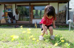 身近な自然にいつも触れられることは心の栄養。