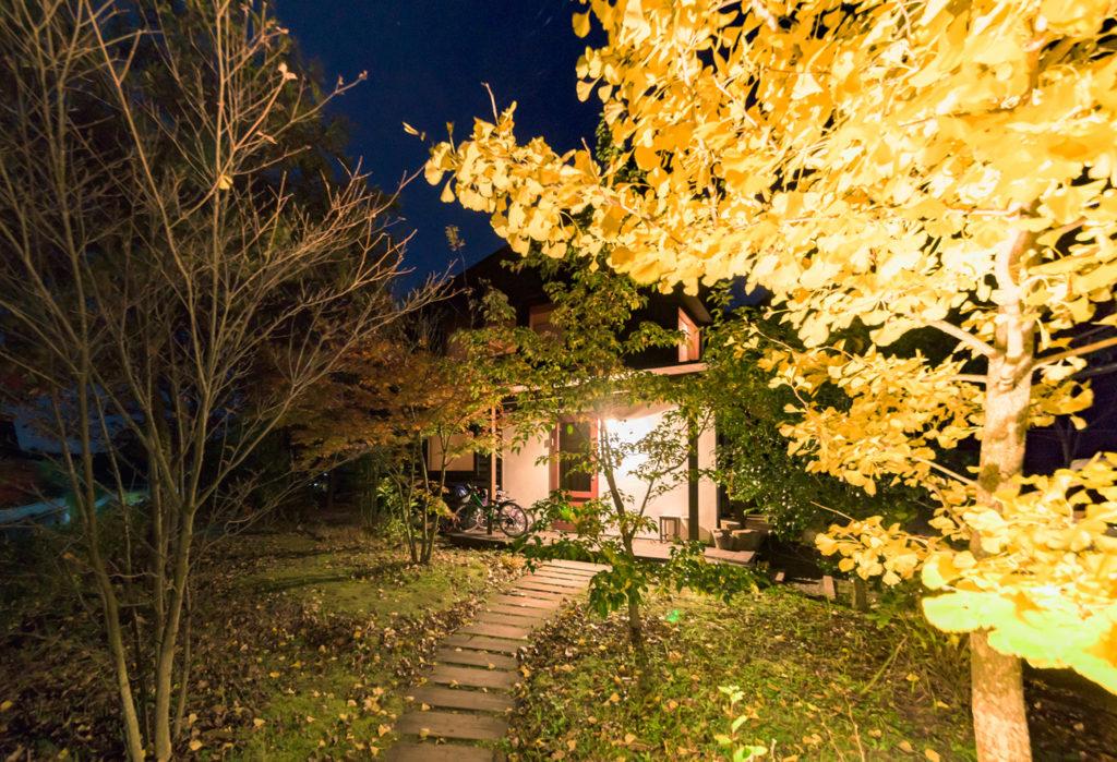 シンケンスタイルの家のアプローチ、イチョウの紅葉が美しい