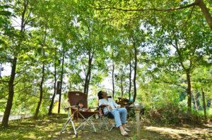 シンケンスタイルの家_雑木の庭